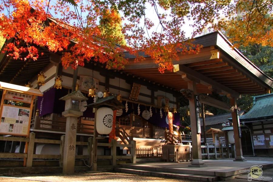 枚岡神社の紅葉