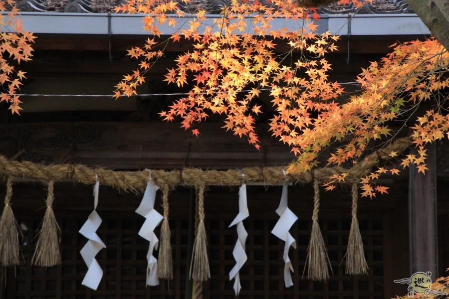 御机神社の紅葉