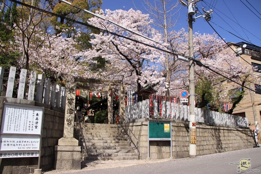 東高津宮の桜