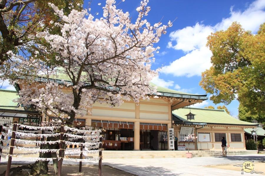 生國魂神社の桜