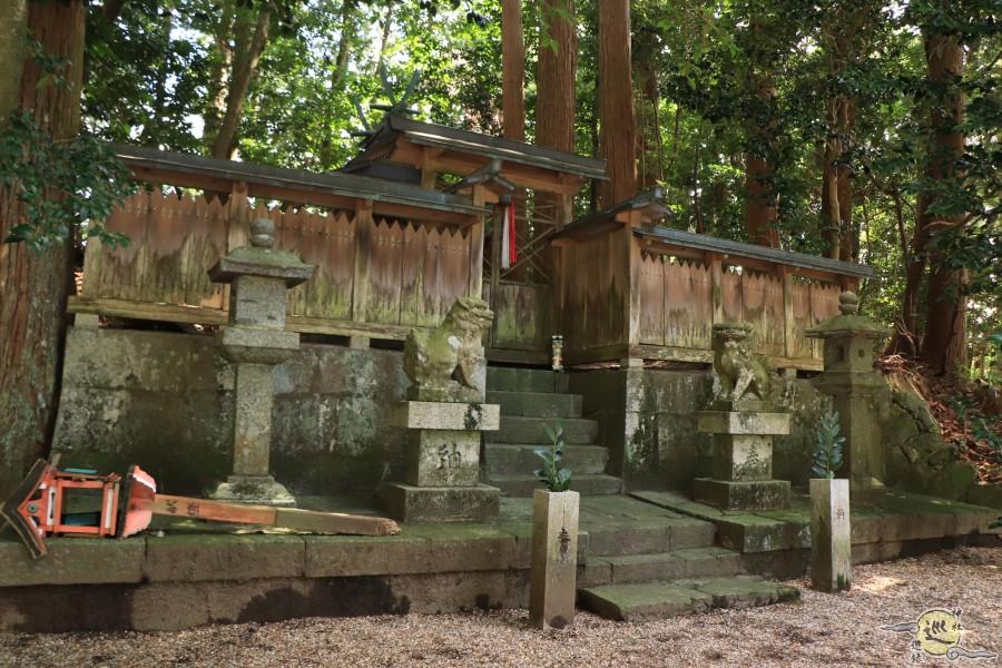 波多神社 明日香村 冬野